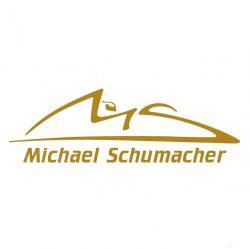 2015, Gold, Schumacher Logo sticker