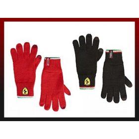 Formula 1 Gloves